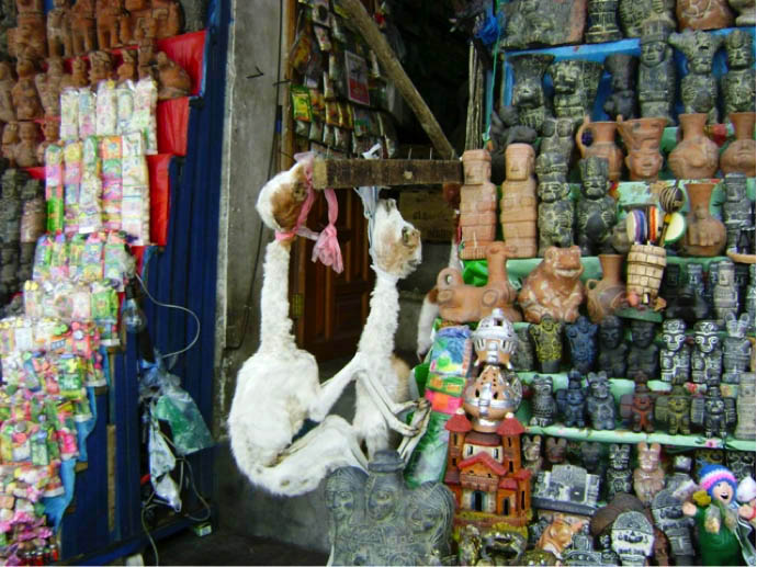 La paz bolivia witches market