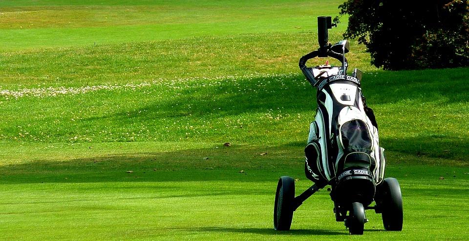 Golf cadie