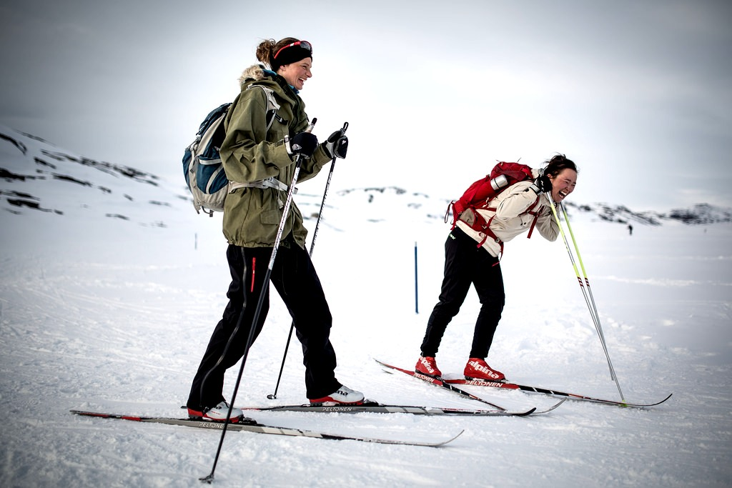Ski Travel Bag - Skiers Having a Great Time