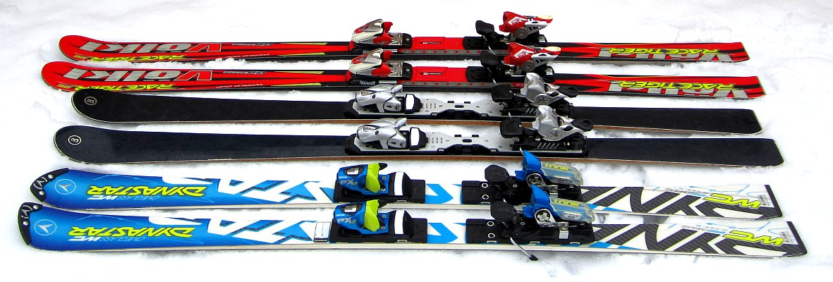 Ski Travel Bag - Skis