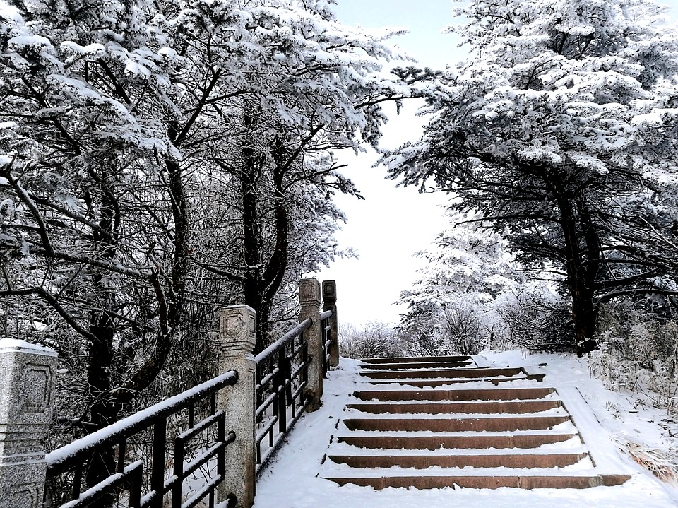 Taebaek Mountains - Snowy Path