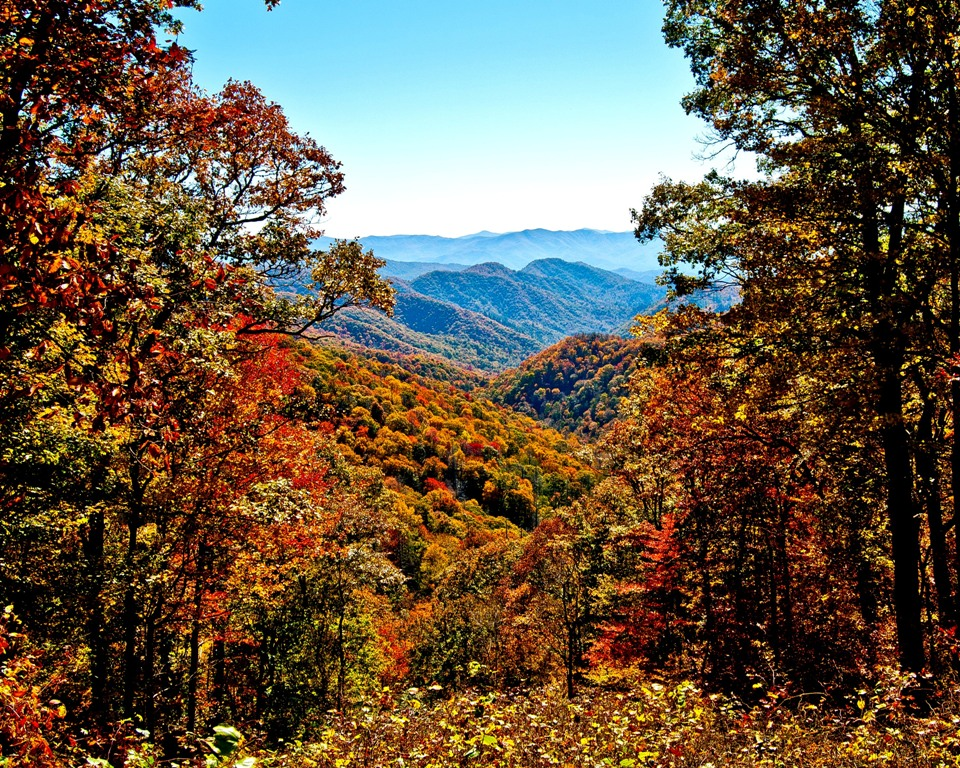 MLK - Great Smoky Mountains National Park